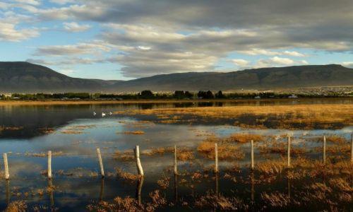 Zdjecie ARGENTYNA / Patagonia / El Calafate / Laguna Nimes