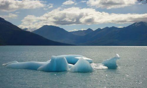 Zdjecie ARGENTYNA / Santa Cruz (Patagonia) / Los Glaciares (El Calafate) / Górka lodowa
