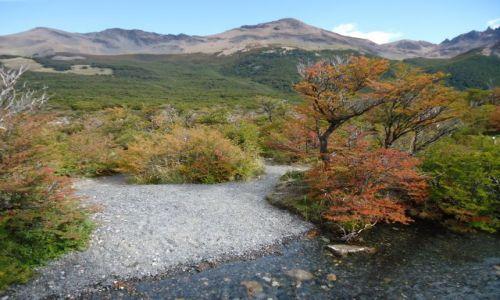 Zdjecie ARGENTYNA / Santa Cruz (Patagonia) / Los Glaciares (El Chalten) / W drodze pod Cerro Torre