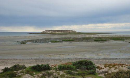 Zdjecie ARGENTYNA / Chubut / Półwysep Valdes / Isla de los Pajaros