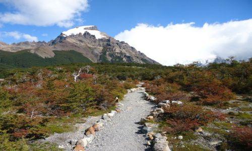 ARGENTYNA / Santa Cruz (Patagonia) / Park Narodowy Los Glaciares (cz. północna) / Szlak pod Cerro Torre