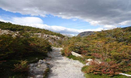 Zdjęcie ARGENTYNA / Santa Cruz (Patagonia) / Park Narodowy Los Glaciares (cz. północna) / W drodze