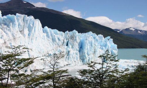 Zdjecie ARGENTYNA / Patagonia / Los Glaciares / Glaciar Moreno
