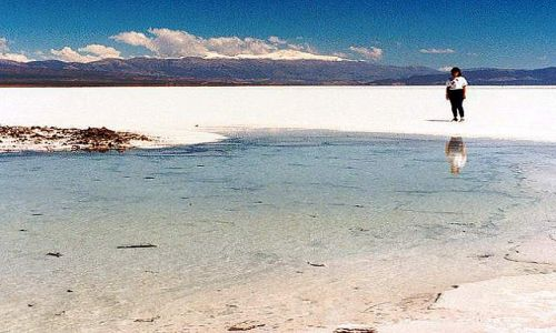 Zdjęcie ARGENTYNA / Puna czyli Altiplano / salar / Magiczna Puna