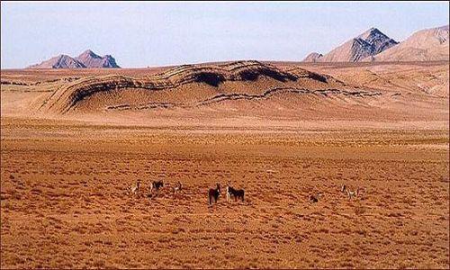 Zdjęcie ARGENTYNA / Puna czyli Altiplano / krajobraz  Puny / Magiczna Puna
