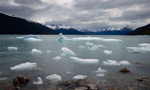 Zdjecie ARGENTYNA / Patagonia / Perito Moreno / Kawałki lodu