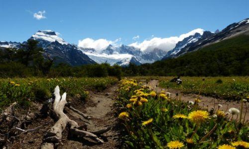 Zdjecie ARGENTYNA / Patagonia / Cerro Torre  / KONKURS