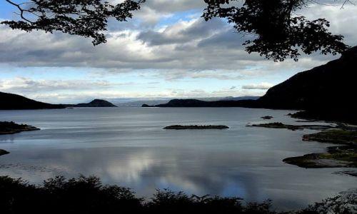 Zdjecie ARGENTYNA / Patagonia / Ushuaia / Park Ziemia Ognista