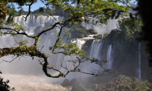 Zdjecie ARGENTYNA / Puerta de Iguazu / Iguazu / Argentynskie Iguazu