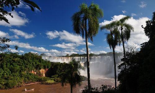 Zdjecie ARGENTYNA / - / Iguasu Falls / Wodospady