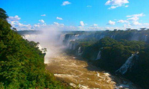 Zdjecie ARGENTYNA / Misiones / Iguazu / Czar natury