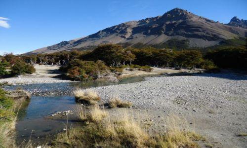 Zdjecie ARGENTYNA / Santa Cruz (Patagonia) / PN Los Glaciares (cz. północna) / Patagoński krajobraz (4)
