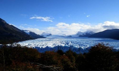 Zdjęcie ARGENTYNA / Patagonia / Lago Argentina / Płynie, płynie lód ku wodzie