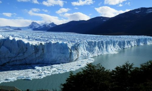 Zdjecie ARGENTYNA / Patagonia / Lago Argentina / Ściana niebieskiego lodu