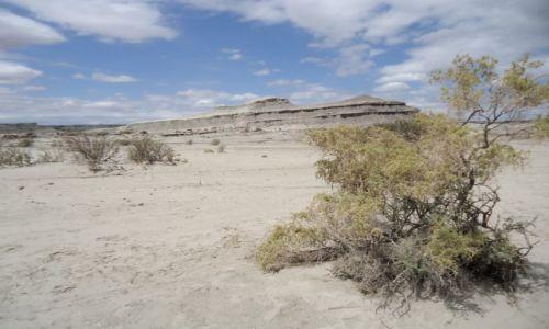 Zdjęcie ARGENTYNA / San Juan / Park Narodowy Ischigualasto / Park Narodowy Ischigualasto (2)