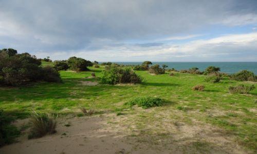 Zdjęcie ARGENTYNA / Chubut / Półwysep Valdes / Typowy krajobraz