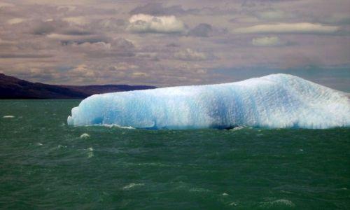 Zdjęcie ARGENTYNA / Patagonia- Lago Argentino / Lago Argentino / w Parku Los Glaciares