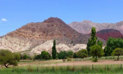 Zdjęcie ARGENTYNA / Jujuj / w drodze do Quebrada de Humahuaca /  widziane po drodze