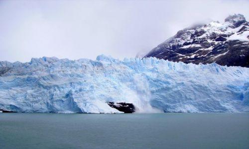 Zdjęcie ARGENTYNA / Patagonia / Lago Argentino /