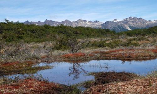 Zdjecie ARGENTYNA / Ushuaia / Laguna Esmeralda / W drodze do Lag