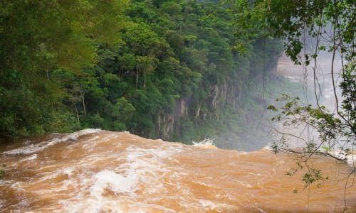 Zdjecie ARGENTYNA / PN Wodospadów Iguazu / jw / Wodospad Eva