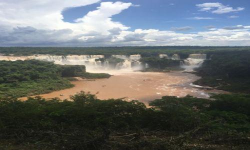 Zdjęcie ARGENTYNA / - / Foz de Iguazu / Wodospad Iguazu