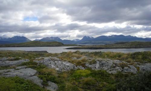 Zdjecie ARGENTYNA / Tierra del Fuego / Ushuaia / nad zatoką Beagle