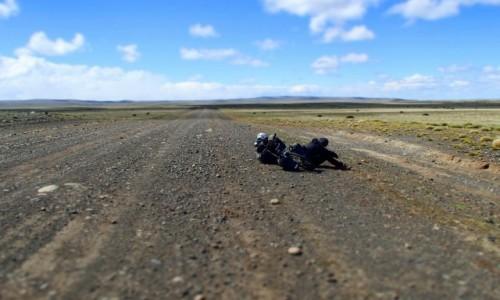Zdjecie ARGENTYNA / Pampa / Pampa / Walka ze słaboś