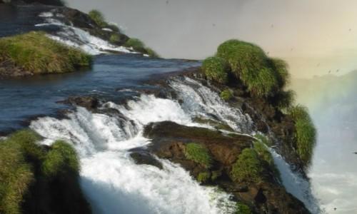 Zdjęcie ARGENTYNA / Misiones / Iguazu / Iguazu