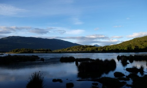Zdjecie ARGENTYNA / Tierra del Fuego / Camping Lago Roca / Wyjrzałem z namiotu, a tam...