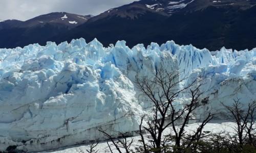 Zdjecie ARGENTYNA / Patagonia / Jw / Perito Moreno Glacier