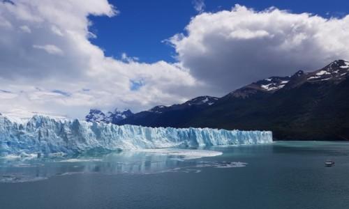 Zdjecie ARGENTYNA / Patagonia / Park Narodowy Los Glaciares / Perito Moreno