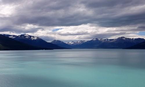 Zdjecie ARGENTYNA / Patagonia-Park Narodowy Los Glaciares / Lago Argentino / Cisza