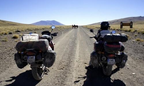 Zdjecie ARGENTYNA / Chubut / Patagonia / Patagonia