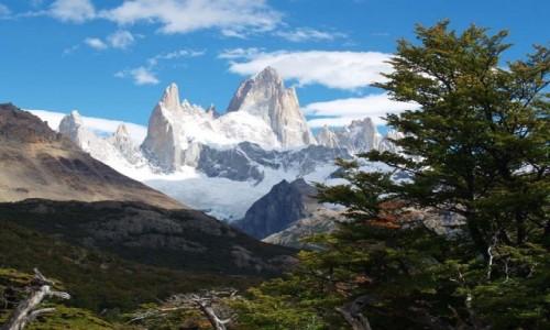 ARGENTYNA / Patagonia / Patagonia / Fitz Roy