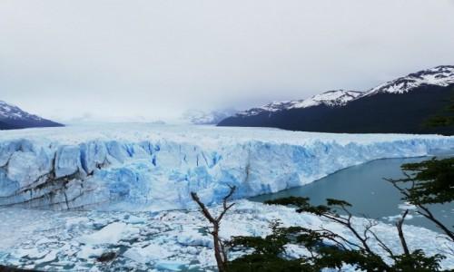 Zdjecie ARGENTYNA / Santa Cruz / Parque Nacional Perito Moreno / Glaciar Perito Moreno