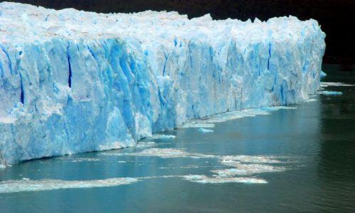 Zdjęcie ARGENTYNA / Patagonia  / Santa Cruz / lodowiec