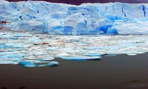Zdjecie ARGENTYNA / Patagonia  / Santa Cruz / duzo niebieskiego lodu