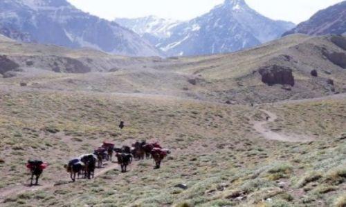 ARGENTYNA / - / Aconcagua / dolina Horcones