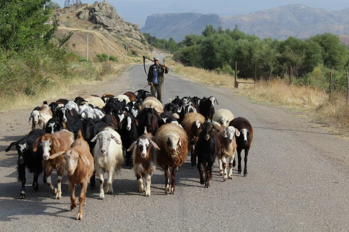 Zdjęcia: Gorski Karabach, Gorski Karabach, Gorski Karabach,Armenia, ARMENIA