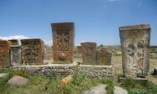 Zdjecie ARMENIA / Gegharkunik / Noratus / Największe pole chaczkarów
