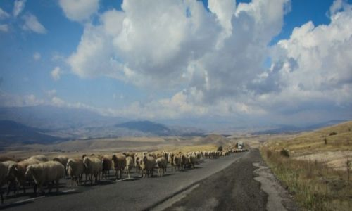 Zdjecie ARMENIA / Armenia / Armenia / Przestrzeń