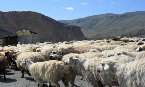 Zdjecie ARMENIA / Erywań / wieś / Na ormiańskiej drodze