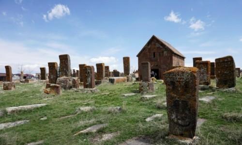 Zdjecie ARMENIA / Gegharkunik / Noratus / Pole chaczkarów w Noratus
