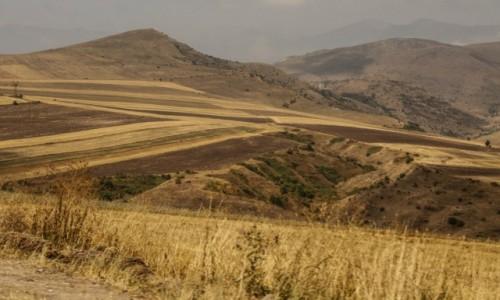 ARMENIA / środkowa Armenia / ok. j. Sevan / Polne wstążki....