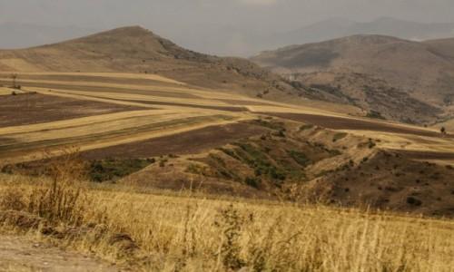 Zdjecie ARMENIA / środkowa Armenia / ok. j. Sevan / Polne wstążki....