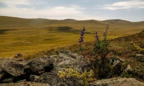 Zdjecie ARMENIA / Centralna Armenia / Góry Gegamskie / ze szlaku...
