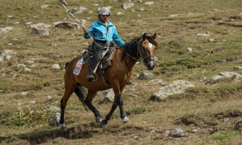 Zdjecie ARMENIA / Centralna Armenia / pod Azhdahak / Jeździec odmiany stepowej....