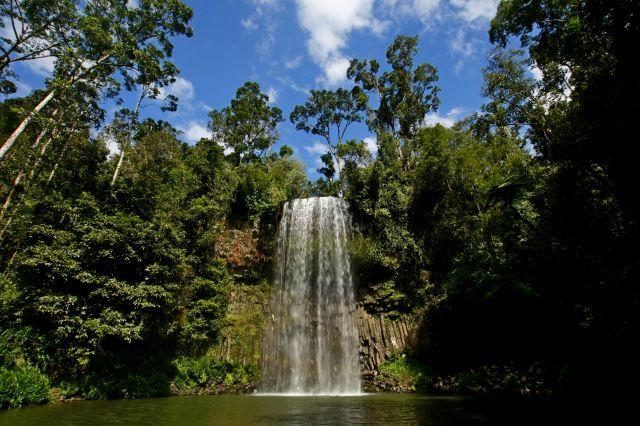 Zdjęcia: Atherton Tablelands, Queensland, Wodospad Millaa Millaa, AUSTRALIA