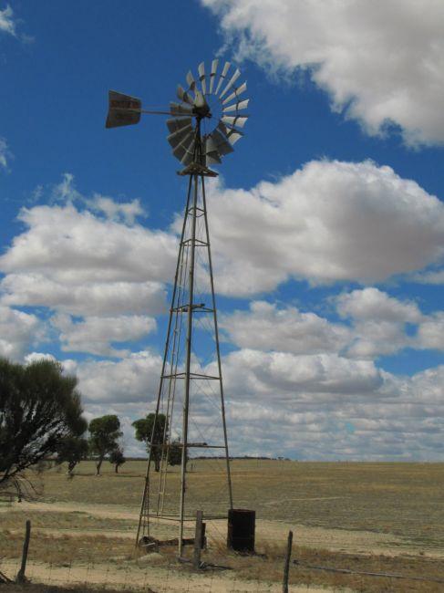Zdjęcia: okolice Hyden, Pn od Albany, okolice Hyden, AUSTRALIA